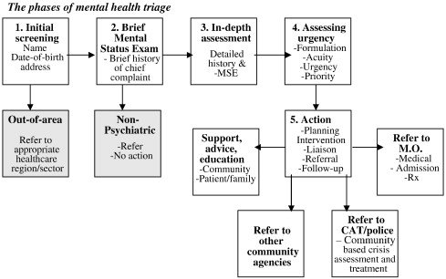 clinical decision making in mental health nursing Versus analytic dimensions of decision-making for mental health  studies of  clinical decision-making in nursing typically put forward the use of two primary  49.
